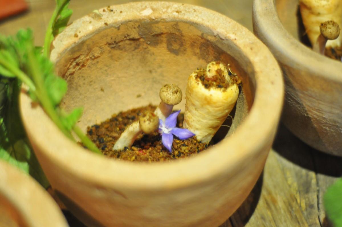 Fem retters meny – Rett 1 – Den spiselige hage