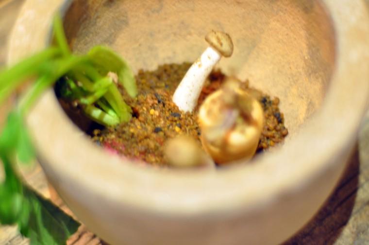 spiselig hage (5)